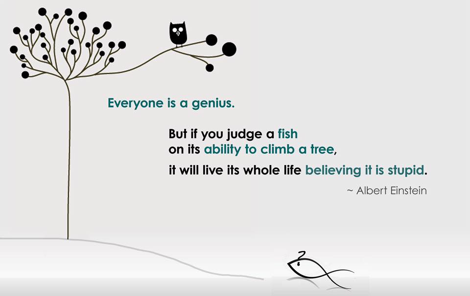 Are you a fish trying to climb a tree?
